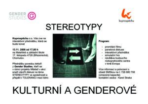 stereotypy flyer